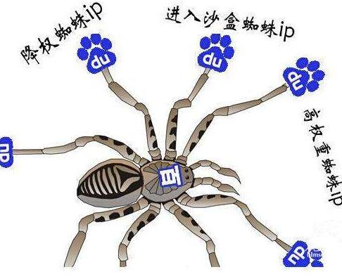如何知道百度蜘蛛有没有访问过自己的站